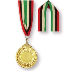 Lanyards in Medal Ribbon