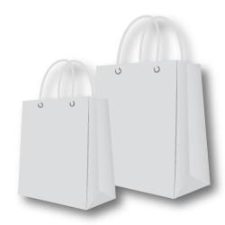 Paper Bags Silver Color