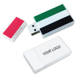 UAE Flag USB